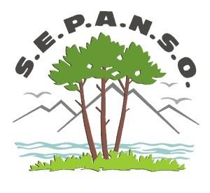 SEPANSO logo